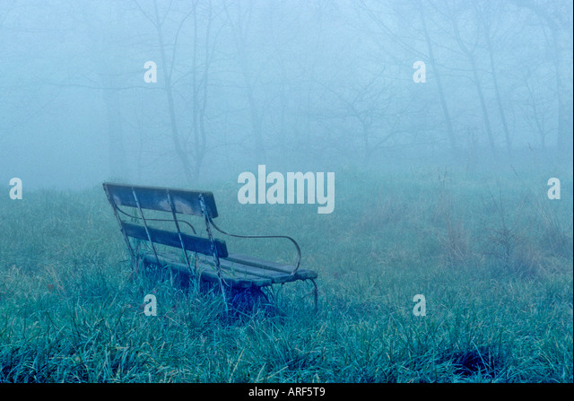 Lone Bench in Fog, London, England - Stock Image