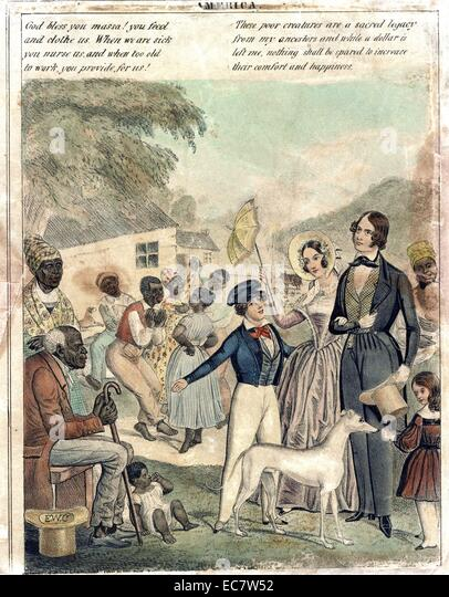 a look at the slavery in america