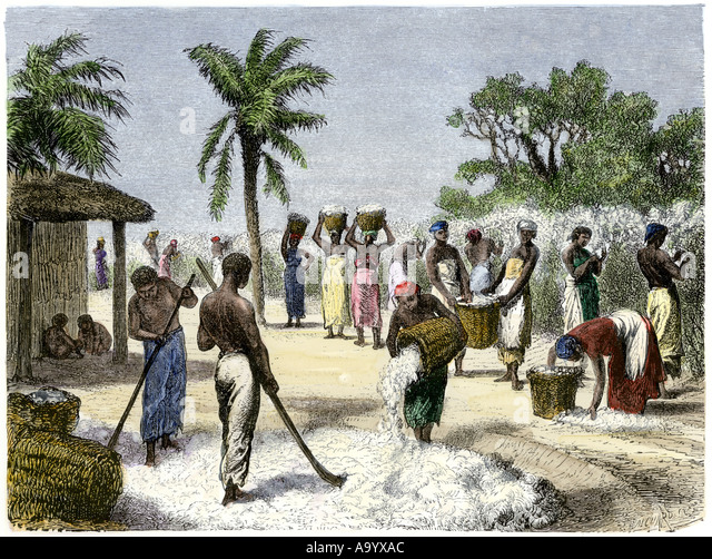 slavery in the southern american colonies