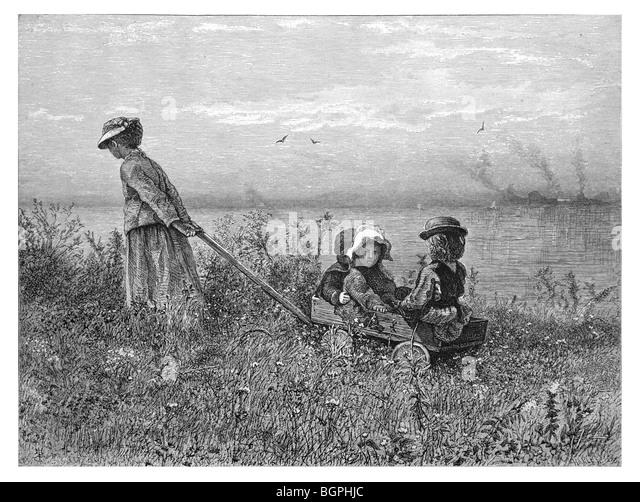 Among the Weeds - Stock Image