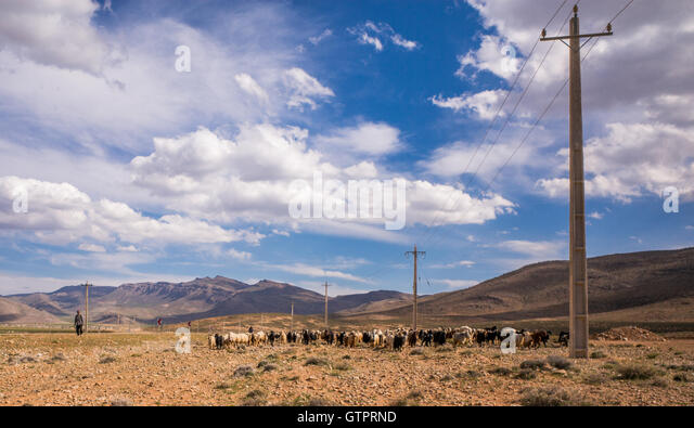 the basseri of iran a pastoral Geographic description the basseri are a nomadic, pastoral and persian tribe of the fars region of present-day iran the area that the basseri migrate in are the steep mountains of south, east and north shiraz.