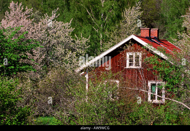 Red cottage in spring garden - Stock Image
