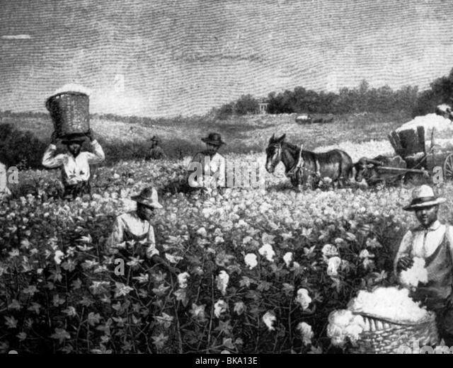 dbq 19th century farmers Apush 1989 dbq essay new farming machinery had a large role in the late 19th century, giving farmers the opportunity to produce a lot more crops than they used to.