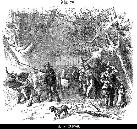 the deforestation by early settlers in new england during the seventeenth century Early european explorers and settlers of north america and july in both new england and in the seventeenth century new.