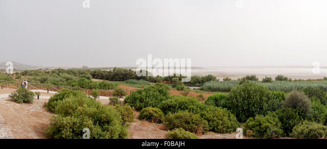 panoramic-view-of-salt-flats-nature-rese