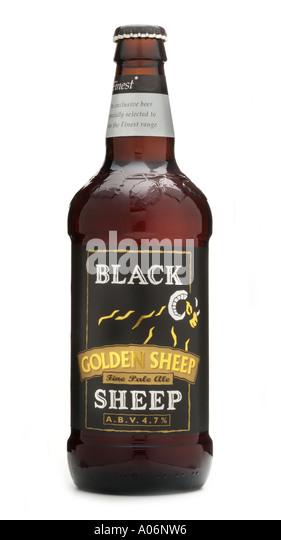 Black Sheep Bottle Shop Everton Hills  Home  Facebook