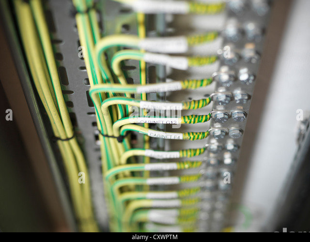 Close up of cables on computer server - Stock Image