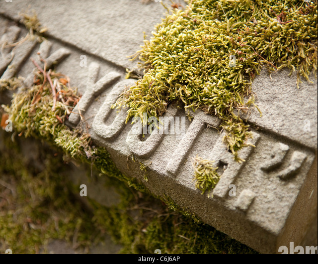 """Gravestone featuring the word """"Youth: covered in moss - Stock Image"""