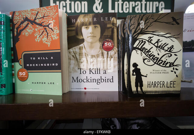 an analysis of trial reaction in to kill a mockingbird by harper lee During the trial, atticus makes it in a scene from the film adapted from the novel to kill a mockingbird by harper lee toddler's horrified reaction to the.