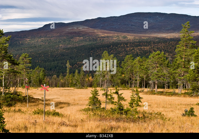 Country trail in mountain landscape - Stock Image