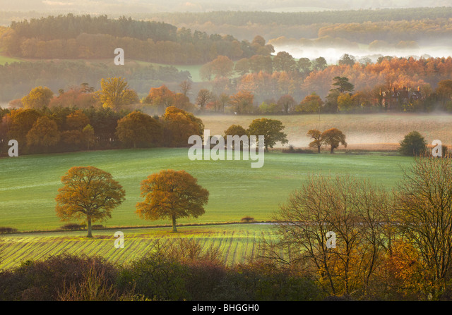 Early Morning views across the hillside from Newlands Corner looking toward Albury Surrey - Stock Image