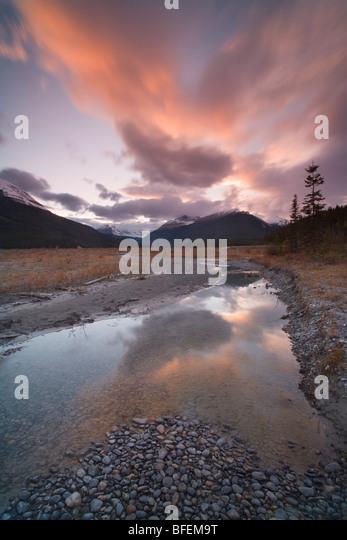 North Saskatchewan River at Graveyard Flats, Banff National Park, Alberta, Canada - Stock Image