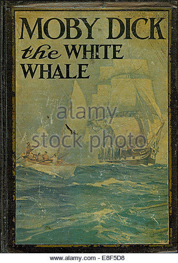 essay on moby dick
