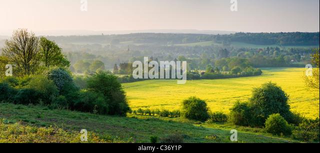 Countryside at Chilworth, Surrey, UK - Stock Image