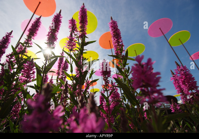 canada-quebec-montreal-flora-outdoor-gar