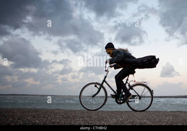 The Netherlands, Kamperland, Woman cycling against the stormy wind. - Stock Image