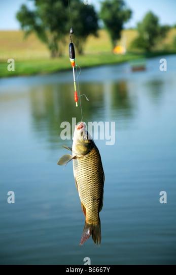 рыбалка с фотками