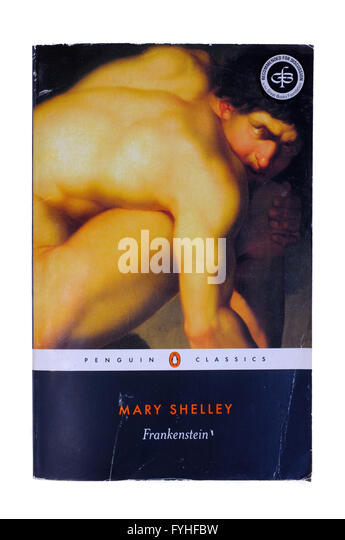 an analysis of the deceiving appearances in mary shelleys novel frankenstein We will write a cheap essay sample on mary shelley's frankenstein shelley, mary w frankenstein or the mary shelley's frankenstein: book analysis.