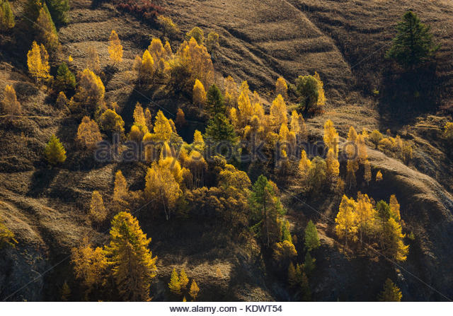 fall-colors-near-les-hires-village-in-oi