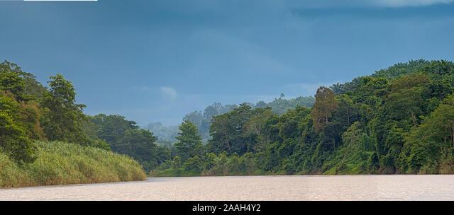 Kinabantangen river of Borneo, Malaysia - Stock Image