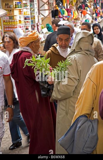 Morocco marrakech market stock photos morocco marrakech for Cd market galeria jardin