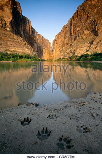 big bend national park an environmental Big bend offers plenty of activities for visitors of all ages the park boasts 150 miles of hiking trails through mountainous desert terrain and along rivers.