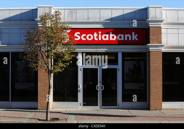 Scotiabank fairview branch florida