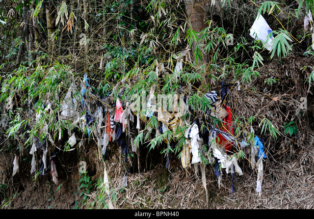 plastic bags and general litter amongst the trees lining a river - Stock Image