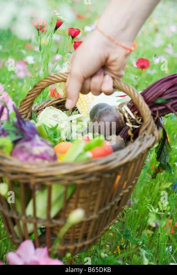 Hand picking up wooden basket of fresh produce - Stock Image