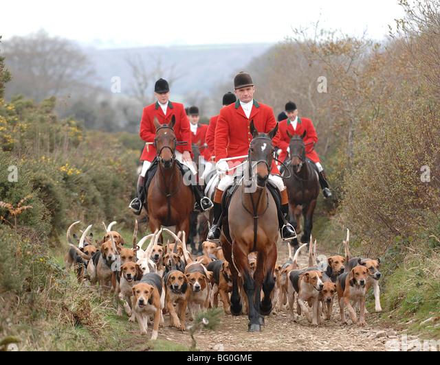 fox-hunting-lamerton-foxhound-led-by-dav