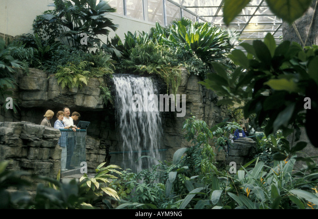 a-waterfall-in-the-tropical-rainforest-e