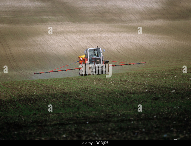 spreading-fertilizer-granules-on-a-young