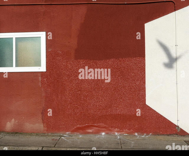 seagull-shadow-on-a-red-stucco-wall-with