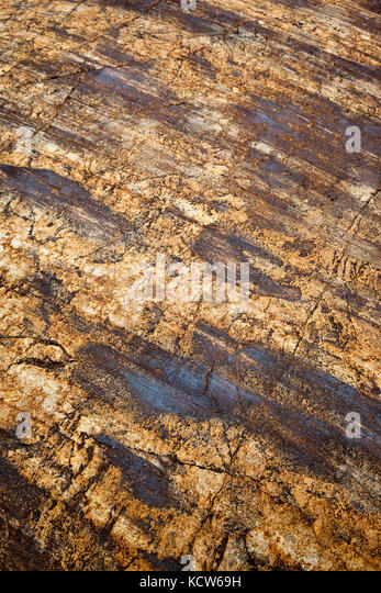 striated-rocks-on-the-viedma-glacier-sou