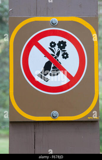 No Picking Flowers Sign Stock Photos  Royalty Free Images