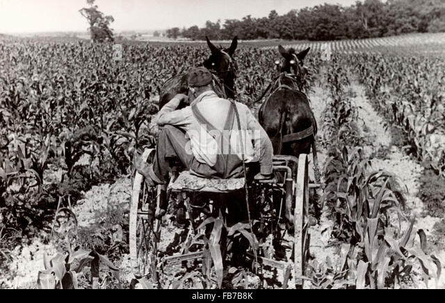farming in the 1930s Recalling farm life in the 1940s farming methods in the '40s and '50s were of course somewhat different than they are today for example.