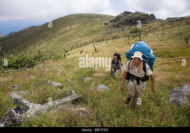 A scientist and his assistant make their way to the summit of Santiago Island in the Galapagos, following in the - Stock Image