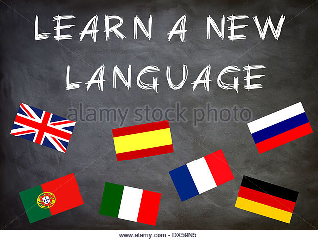 essay should everyone learn english