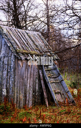 Old lappish sledge lean on the wall - Stock Image