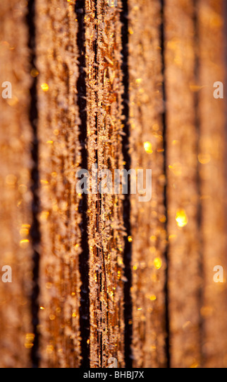 Frosty wall boards at cold Winter day - Stock Image