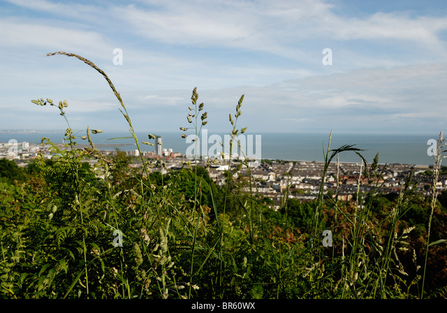 view-of-the-city-of-swansea-taken-from-r