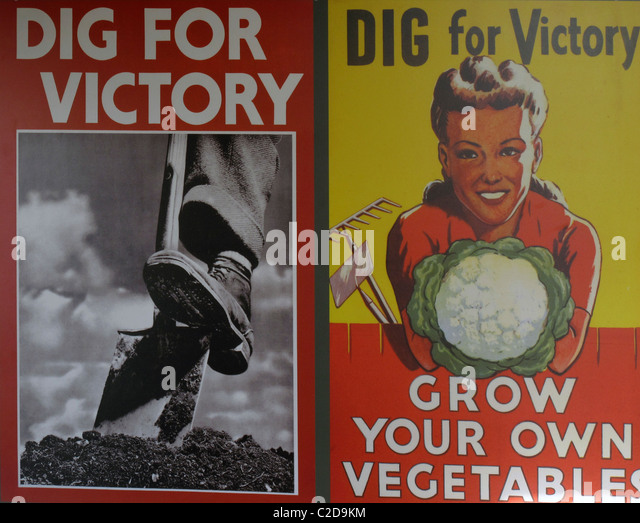 """war gardens for victory grow vitamins at your kitchen door patriotism or propaganda Gerald horne race war white supremacy and the japanese attack on the fore a door closed on centuries republican propaganda"""" however, by the war's."""