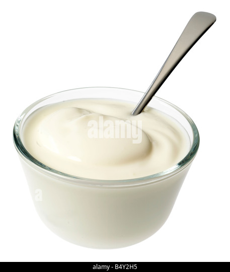 PLAIN NATURAL YOGURT - Stock Image