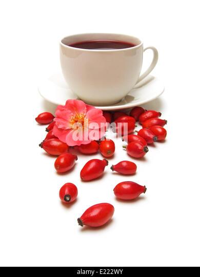 Роза шиповник чай