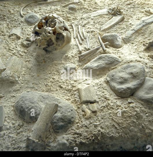 homo-neanderthalensis-neanderthal-man-bu