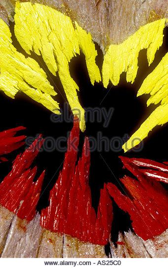 Crayon shavings. - Stock Image