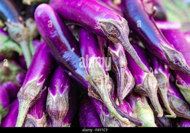 aubergine or purple