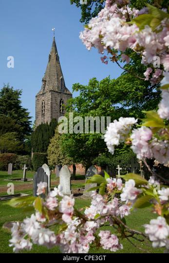 Church and spring blossom, Burton Joyce, Nottinghamshire, England, United Kingdom, Europe - Stock Image