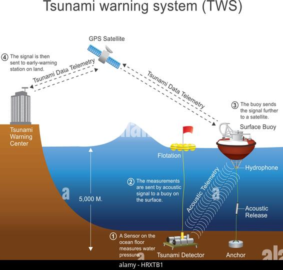 warning during tsunami