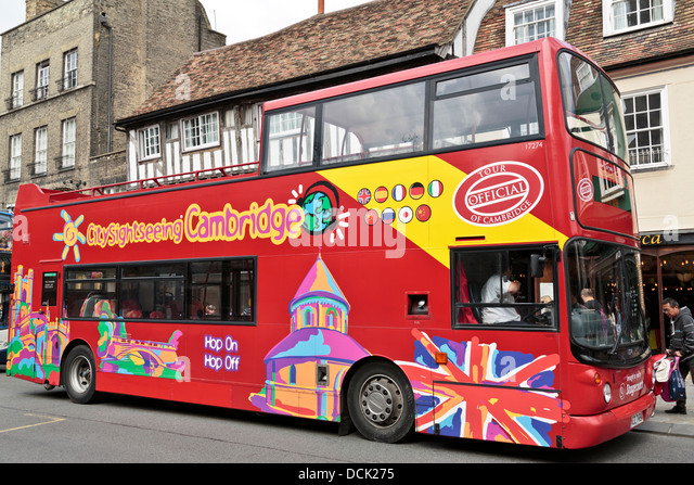 sightseeing trips Experience the best of new york city sightseeing by bus, cruises and helicopters enjoy the fun and flexibility of new york bus tours/hop-on, hop-off by sea and land.